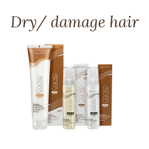 Capilo Hydra-In Dry and Damaged Hair
